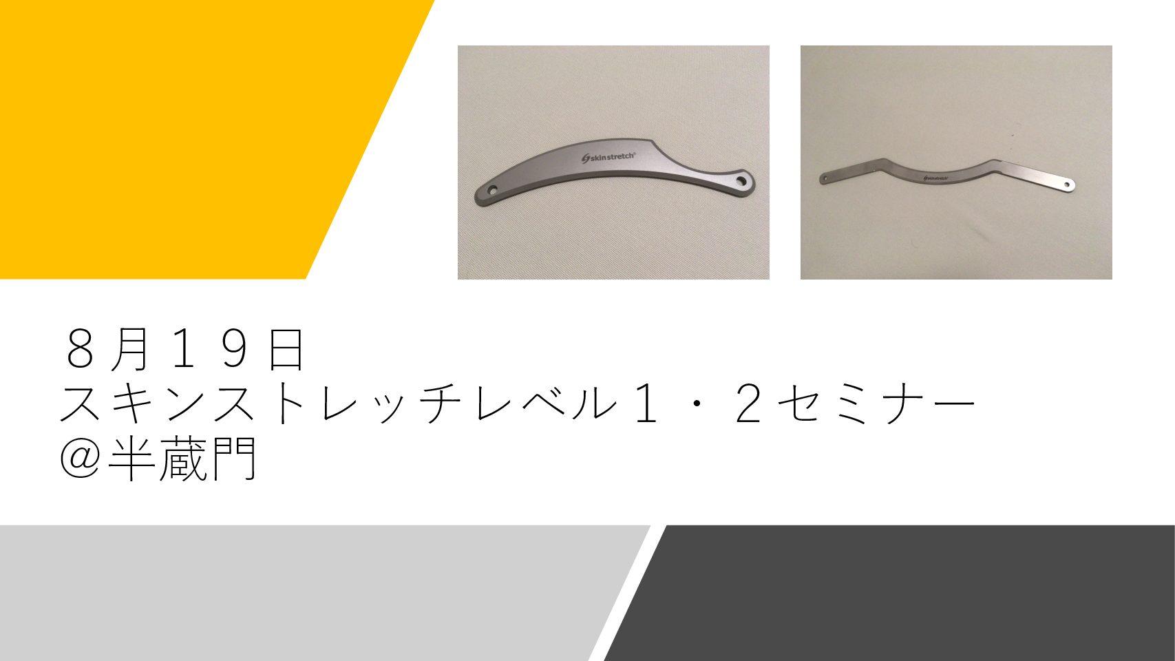 【セミナー報告】スキンストレッチレベル1・2セミナー